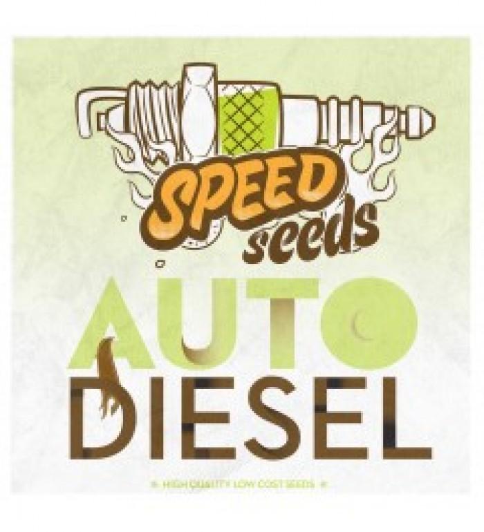 Auto Diesel 60 unds (Speed Seeds) Semilla Autofloreciente Feminizada Cannabis,