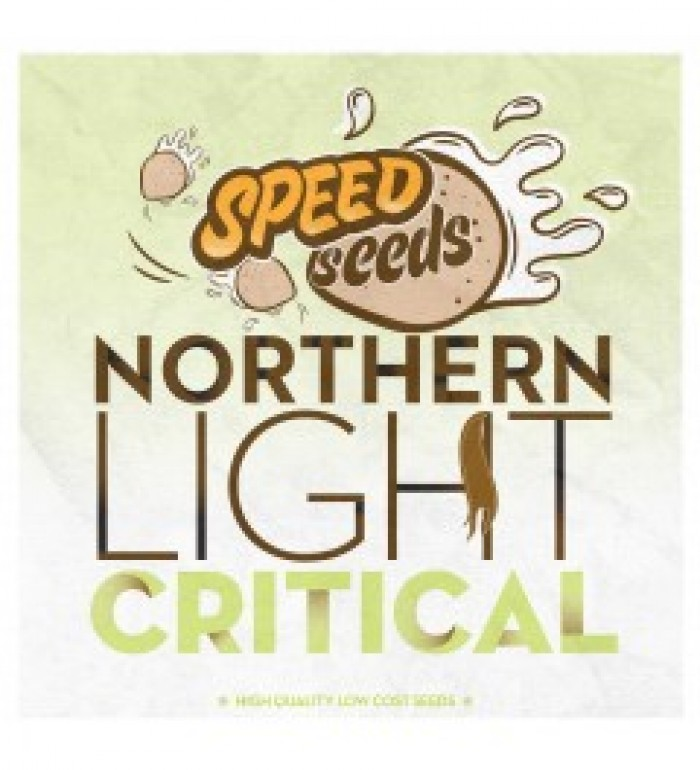 Northern Light x Critical 60 unds (Speed Seeds)