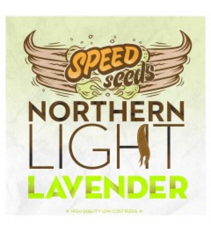 Northern Light x Lavender 30 unds (Speed Seeds
