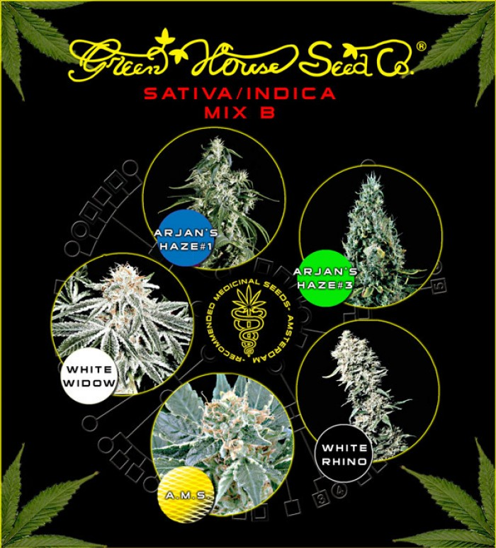 Sativa/Indica Mix B (Green House Seeds)