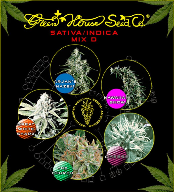 Sativa/Indica mix D (Green House Seeds)