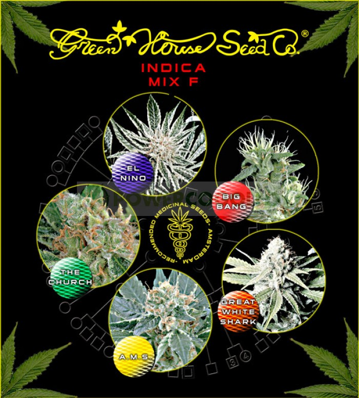 Indica Mix F (Green House Seeds)