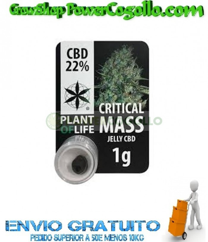 EXTRACTO CBD JELLY HASH 22% CRITICAL MASS