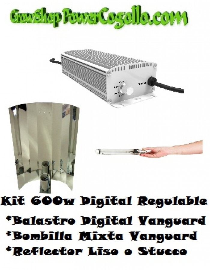 Kit 600w Digital Regulable + Bombilla mixta + Reflector Liso o Stucco