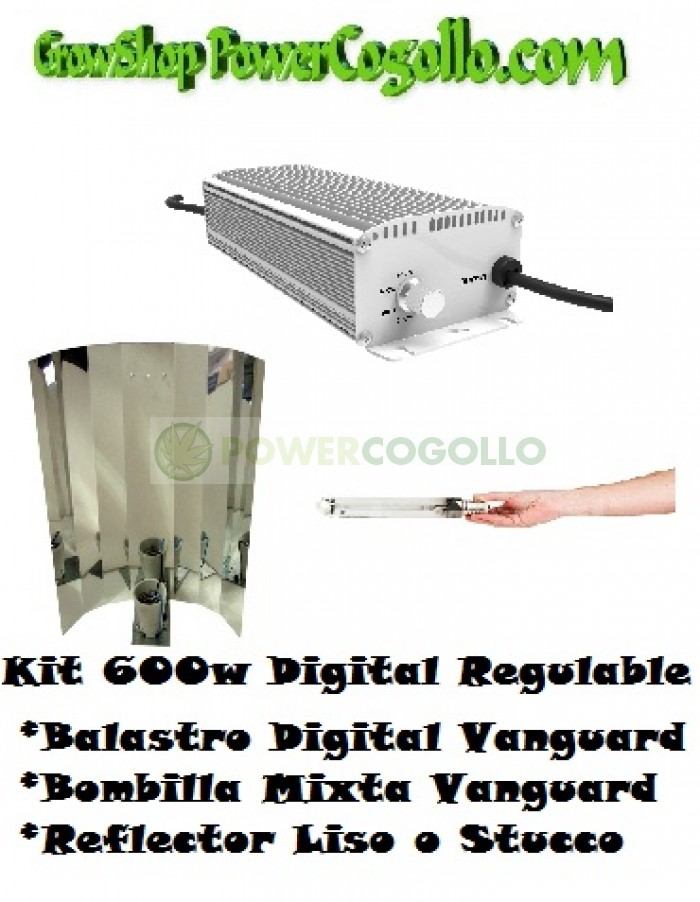 Kit 600w Digital Regulable + Bombilla mixta + Reflector Liso o Stucco