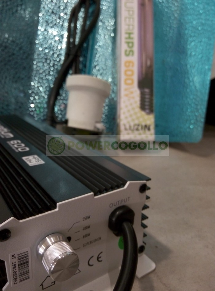 KIT 600W WATTIUM ELECTRONICO REGULABLE