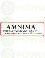 Amnesia Feminizada 100% Granel