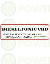 DIESELTONIC CBD FEMINIZADA GRANEL