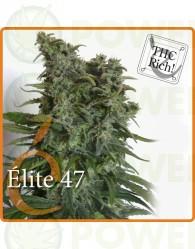 Élite 47 Feminizada (Elite Seeds)