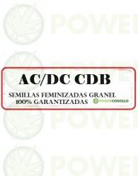 AC/DC CBD FEMINIZADA GRANEL