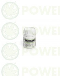 AlliumProt (Prot-Eco) 100ml