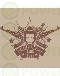 Buddha Ak Auto Classics (Buddha Seeds)