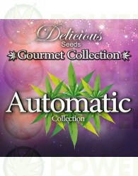 AUTOMATIC STRAINS 1# GOURMET COLLECTION (DELICIOUS SEEDS)