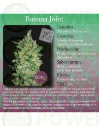 Banana Joint (Elite Seeds) Semilla Feminizada