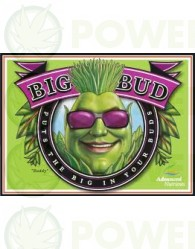 Big Bud (Advanced Nutrients) Abono de floración para Cannabis.