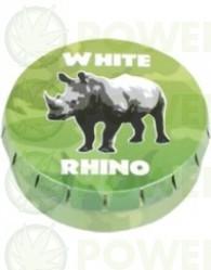 CAJA METAL CLICK CLACK WHITE RHINO
