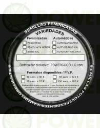 Auto Deimo XXL (Cannabis Seeds) Feminizada