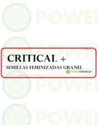 Critical + Feminizada 100% Granel