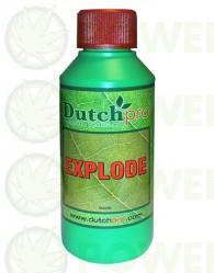 Explode (Dutch Pro)
