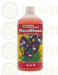 Flora Bloom (GHE)