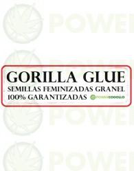 Gorilla Glue Feminizada 100% Granel