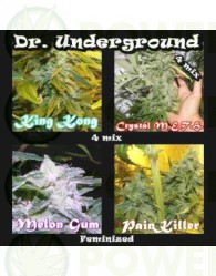 Killer Mix 4 (Dr. Underground Seeds) Pack 4 Semillas Feminizadas Cannabis