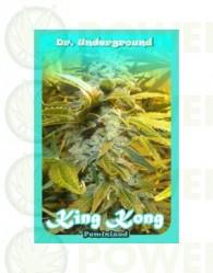 King Kong (Dr. Underground Seeds) Semilla Feminizada Cannabis - Marihuana