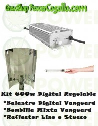 Kit 600w Digital Regulable + Bombilla mixta + Reflector