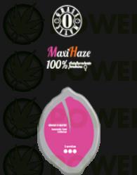 Maxi Haze Automatic (GRass-o-Matic) Semilla feminizada Autofloreciente Cannabis