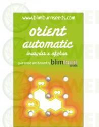 Orient Automatic 3 Semillas (Blim Burn Seeds)