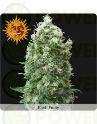 Phatt Fruity (Barney´s Farm Seeds)