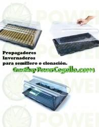 Invernadero Propagador Económico (39 X 59 X 21 CM)