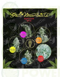 Sativa mix (Green House Seeds)