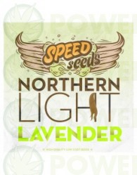 Northern Light x Lavender 60 unds (Speed Seeds)
