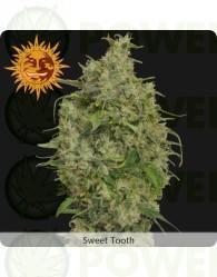 Sweet Tooth (Barney´s Farm Seeds)