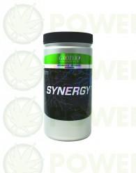 Synergy Grotek Organics