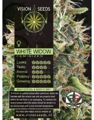 White Widow Semilla Feminizada