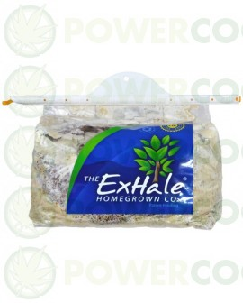 The Exhale CO2