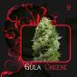 Gula Cheese (7 Pekados)