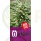 Narkosis (Blim Burn Seeds)