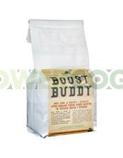 Boost Buddy Co2 generador Co2 Natural