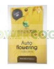 Autoflowering Pack (World of Seeds) Semillas Feminizadas Autoflorecientes