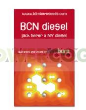 BCN Diesel (Blim Burn Seeds)
