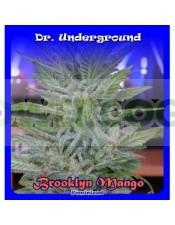 Brooklyn Mango (Dr. Underground Seeds) Semillas Feminizadas Cannabis-Marihuana