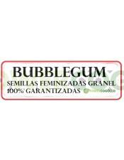 BubbleGum Semilla Feminizada 100% Granel
