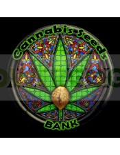 Psico Soma (Cannabis Seeds) Feminizada