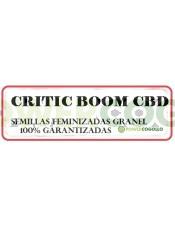 citric-boom-cbd-feminizada-granel