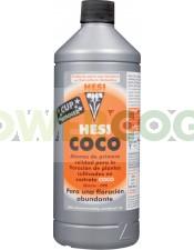 COCO HESI