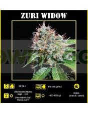 Zuri Widow