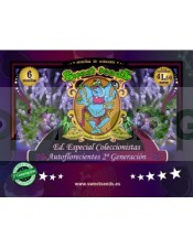 Ed. Especial Autoflorecientes 2ª Generación (Sweet Seeds) 6 semillas feminizadas Automáticas Cannabis